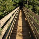 puente camino acequia