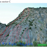 Sector C Forronias